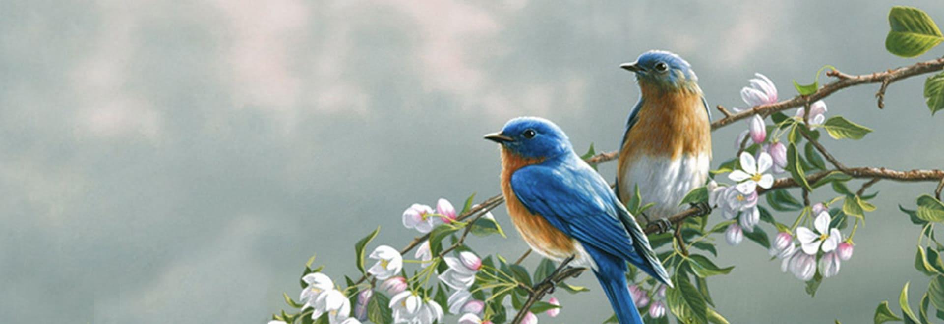 herend rothschild uccelli porcellana ungherese decorata a mano